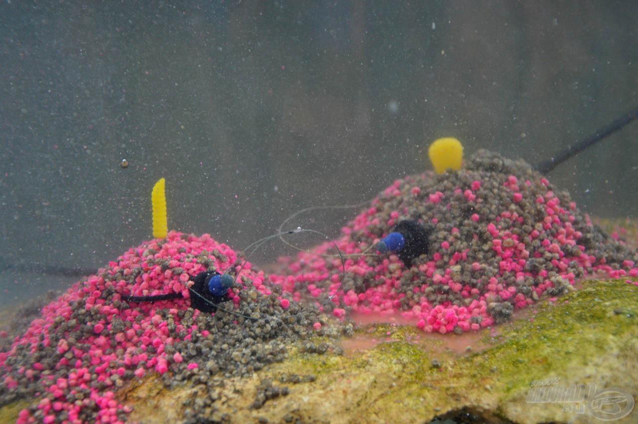 Mindig az alul lévő marad benne a kosárban, míg a felül lévő kioldódva, a kosár köré szóródva várja a halakat