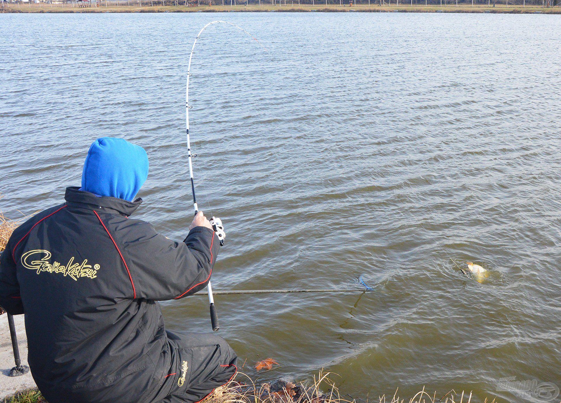 A By Döme TEAM FEEDER Pro Method Feeder botok tökéletesek a tavaszi finomszerelékes horgászatokhoz