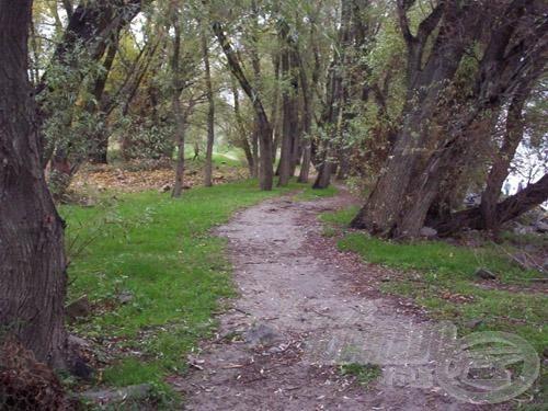 Aki szán rá időt, az ilyen gyönyörű ösvényen sétálhat