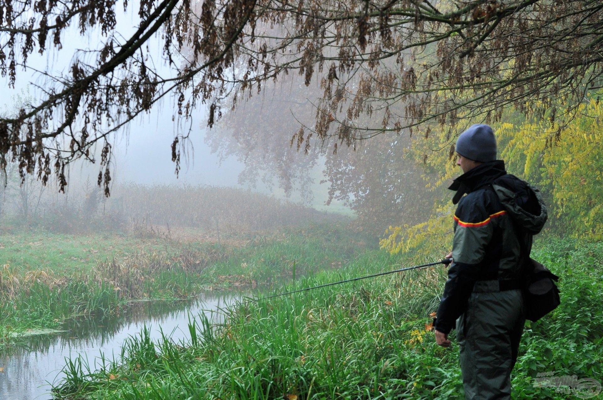 Az első ködös téli reggelen könnyű pergető bottal vettem üldözőbe a kisragadozókat