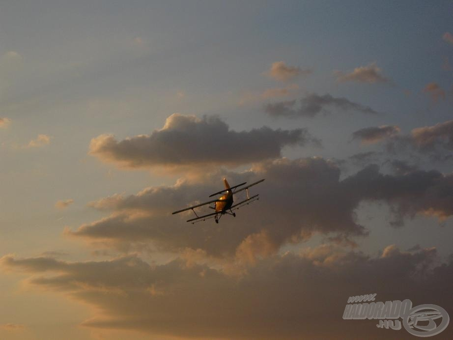 Egy repülő körözött felettünk