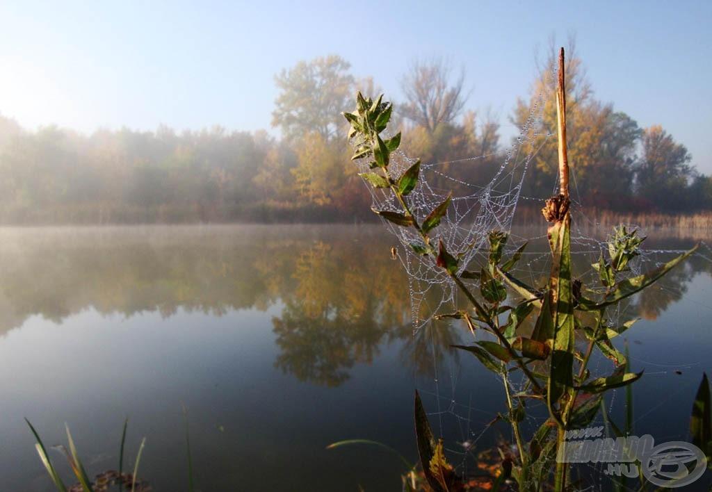 Októberi ködös reggel