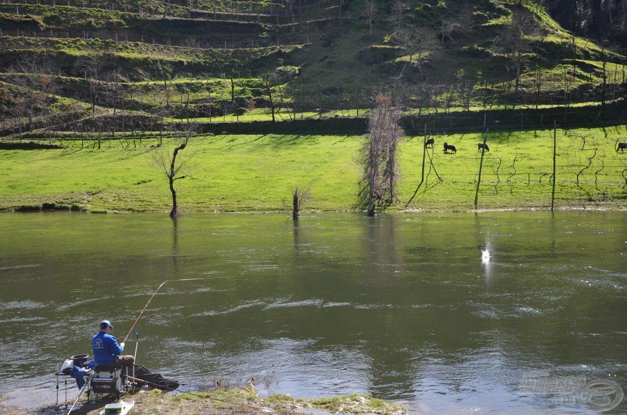 Kezdődjön hát a horgászat!