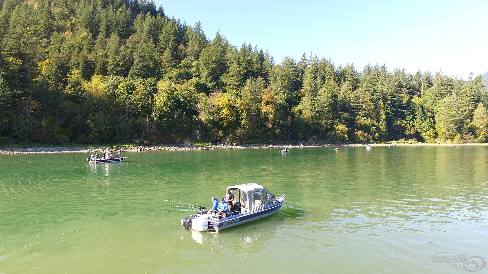 A tiszta vízű Harrison folyó és a zavaros Fraser találkozása jó haltartó hely