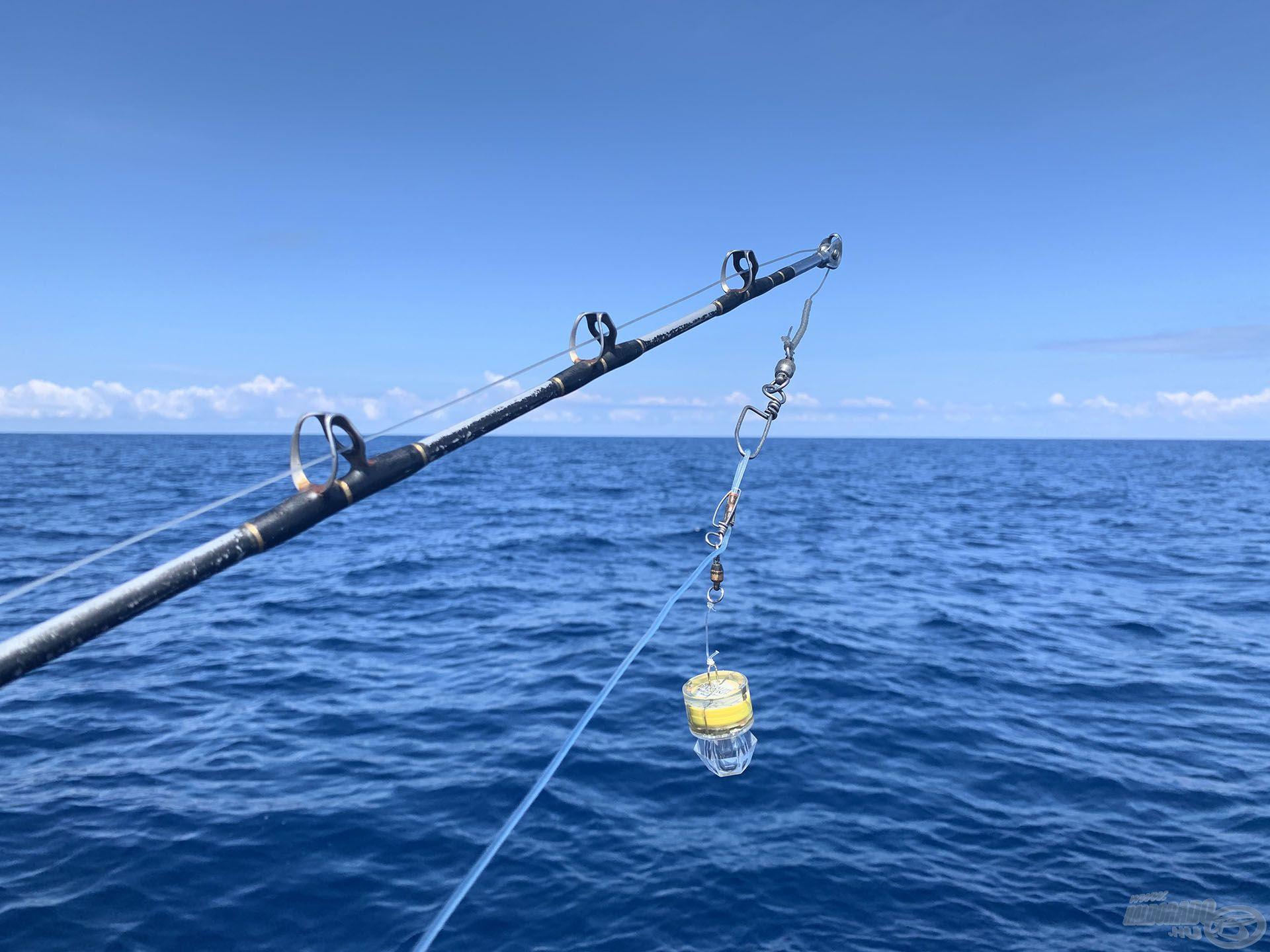 Itt 600 méter mélyen vontattuk a csalit, 150 méter alatt a víz már teljesen sötét. A végszerelékbe beiktattak egy villogó LED-et, amelyet még biztos nem láttak az itt élő halak
