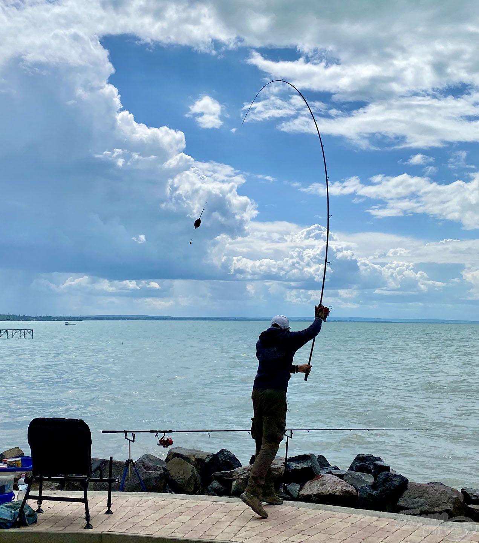 A Pellet Feeder kosaras végszerelékkel megpróbáltam azonos helyre dobni – ha volt kapás, ha nem – 10-15 percenként, a method végszerelékkel pedig kereső horgászatot végeztem. További etetést nem kaptak a halak