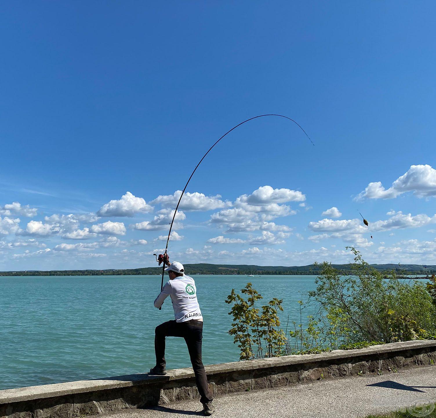 A kaját az átlagosnál ragacsosabbra gyúrtam (hogy a kosárban tovább bennmaradjon) és a csalit szabadon hagytam, hogy a halak előbb hozzáférjenek