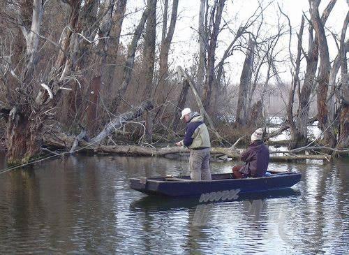 A legyes páros a fák kötött keresi a halat