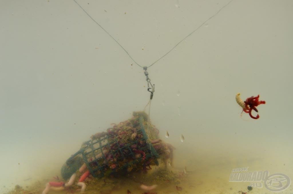 Így néz ki a vízben