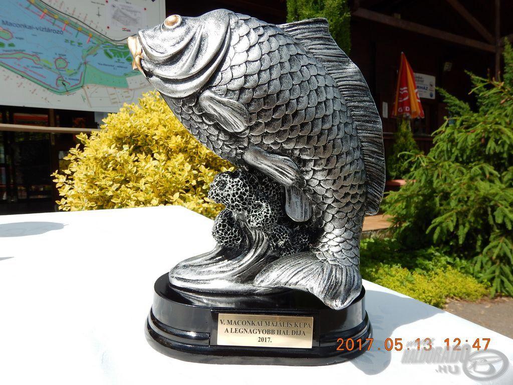 A legnagyobb hal díja ma új dimenzióba került