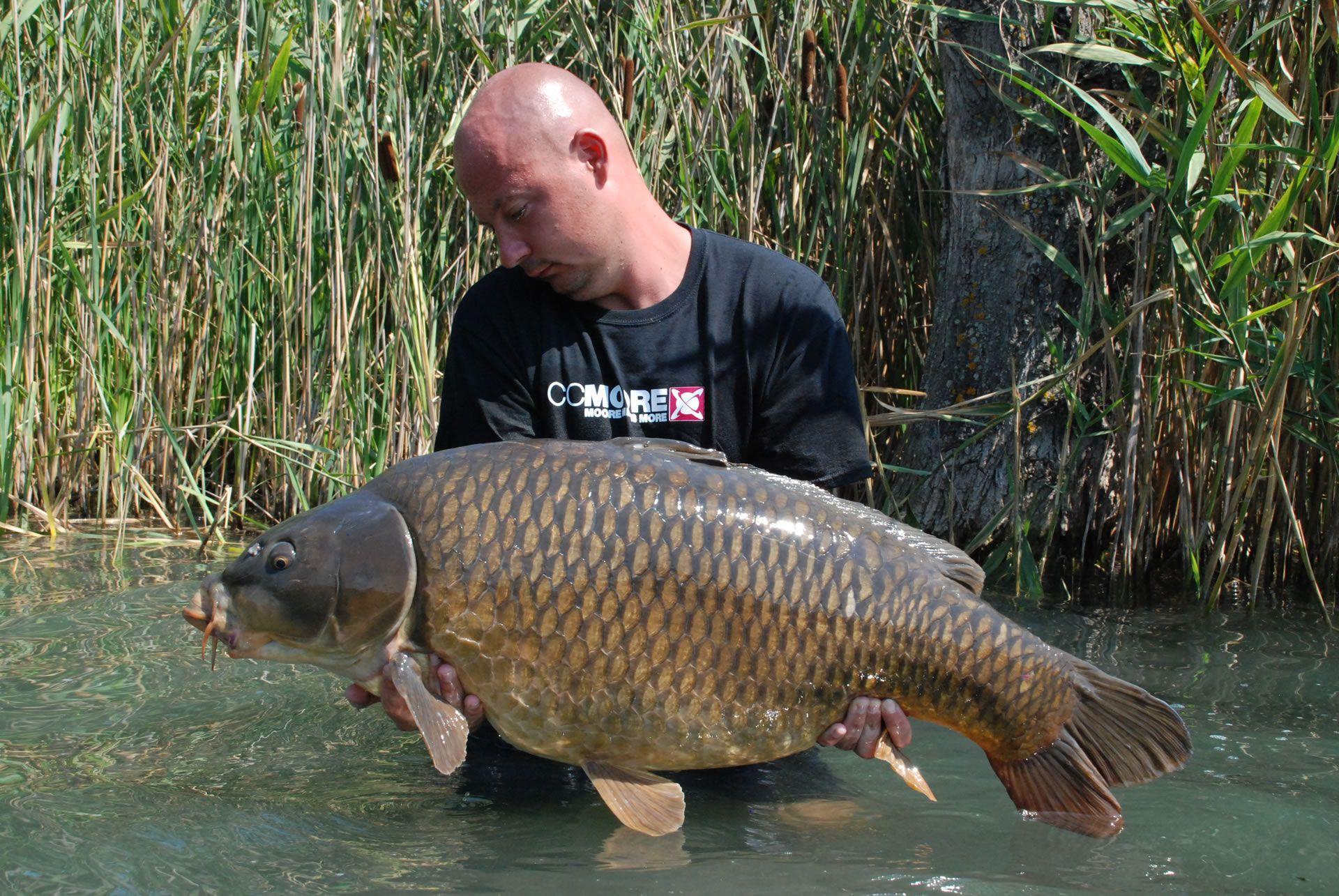 Czifra Antal tapasztalt nagyponty-horgász, számára (is) első a halak és a természet szeretete!