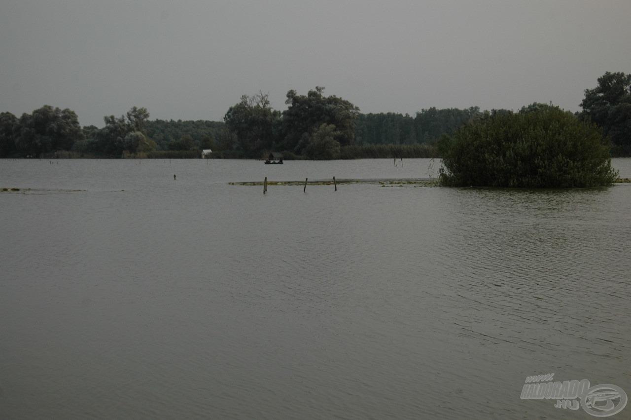 Tőlünk jobbra húzódó kis sziget némi tavirózsával borítva, mely szintén ígéretes helynek tűnik
