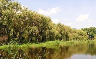 Merseváti-tó