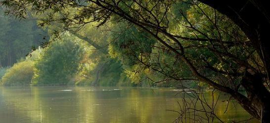 Mosoni-Duna és mellékágai 08-140-1-1