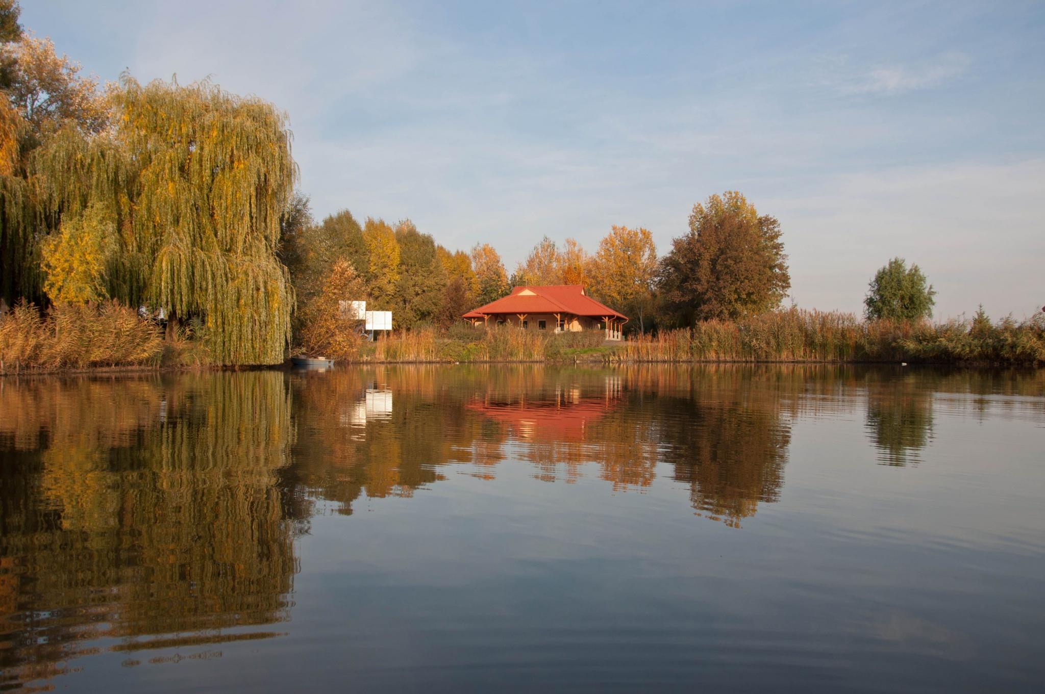 Székely - Őzetanya Bojlis tó